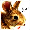 Easter - OMG Bunny