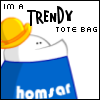 I'm a trendy tote bag